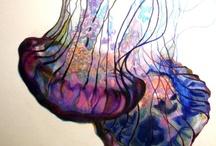 Creative Inspiration / by Emily Baiza
