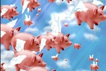 When Pigs Fly**** / When will I stop pinning?.....When Pigs Fly!  / by Diane Freyer