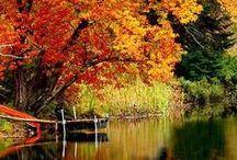 autumn & winter / by Antonio. M