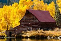 Autumn-The Season / by Carole Sklenar