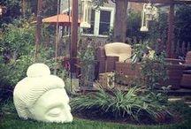 Outdoor Paradise - Backyard Inspiration / by Melissa Maynard