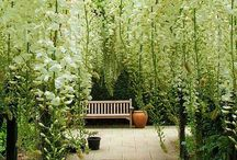Outdoor rooms and spaces / by Donna Sullivan