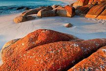 Australia / by Donna Sullivan