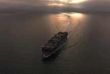 Moving Pictures / by Maersk Line