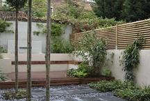 Small garden ideas / by Leenie