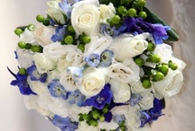 ASSORTED COLORS Inspiration / all the other colors of the spectrum / by Madison Floral
