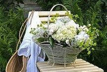 ❀...Baskets of Pretty / by Jen Luff