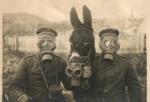 World War I / by Nancy Comee