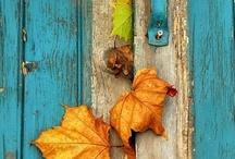 Autumn/Fall Love / by Ashley Brooke-Dunsford