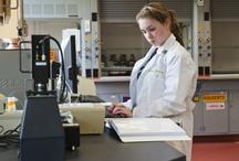 Women in Science / by Bay Path University