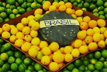 Brazilian Samba / The people and culture of Brazil. / by Lise Gillen