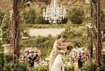 weddings / by Sarah White