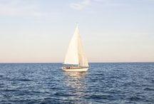 Sail Away / by Sara Newstein