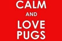 All Pugs!! / by Laura Ann Hash Designs