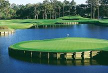 Golf Course I Love / by Michelle Murray