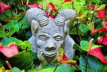 Caribbean Gardens / Caribbean Gardens - Gardens of the Caribbean - Tropical Flowers  / by Caribbean Sunshine or @CaribbeanInfo