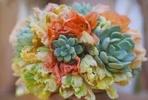 wedding ideas / by Mary Willson