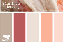 Pretty Color Schemes / by Lauren Puchades
