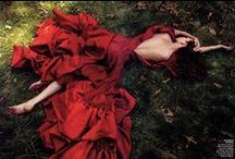 Beauty / by Maria Urrutia