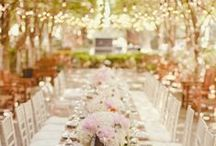Wedding / by Olivia Gruber