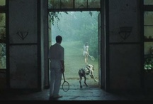 italian film / by siriah