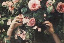 roses / by siriah