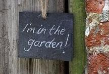 Garden / by Nicole Souders