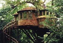 Tree Houses / by Cincia Bigia