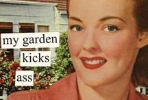 GARDENING:   Flowers & Shrubs / . / by Cathleen