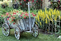 Gardening Containers...all shapes & sizes / basically anything that can be used as a gardening container. / by Cathleen