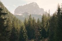 Wilderness / by Cincia Bigia