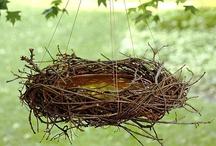 Feeders, Baths & Houses /  Bird & Squirrel Feeders, birdbaths, birdhouses / by Cathleen