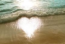 Love Me Do ! / by Rachel Deerfield