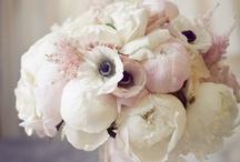 Love of flowers / by Rachel Deerfield