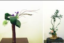 Ikebana / by Anna S