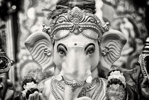 // India love / by Valeria Juillet