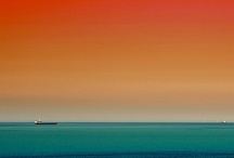 colors of summer / by Janice Moneta