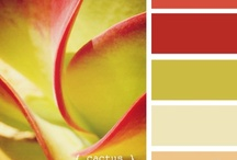 Color inspiration / Color palattes for my future house / by Lizzie Elmore