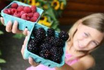 Simply Organic  / Duchy Originals is now certified USDA organic. / by Duchy Originals U.S.