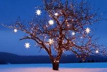 Happy Holidays / by Brittany Leonard