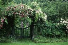 garden structures / Architecture / by Meg Colquhoun