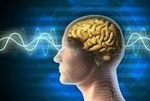 Neuroscience / by Belinda Witzenhausen