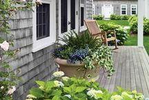 Gardening ideas / by Jenny (Evolution of Style)