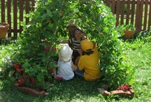How Does Your Garden Grow? / by Cheryl Dotson Wooten