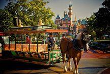 Disneyland & Walt Disney / by Nati