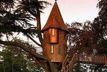 TREE HOUSE / Homes and play house's built above ground and in trees / by Karen Taylor