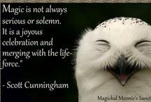 Animal Ally: Owl / by Ellen Dugan