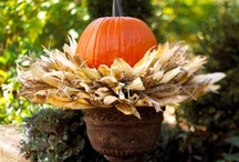 Fall is My Fave / Nothing makes me happier than crisp air, changing leaves, and pumpkins! / by Ashley Beck
