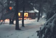 winter / by Natasha Medeiros