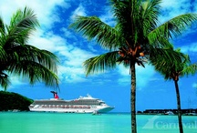 Our Magnificent Ships / by Carnival Cruise Lines